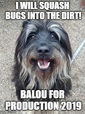 Balou for Production 2019