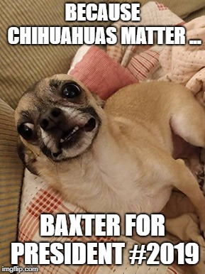 Baxter for President 2019