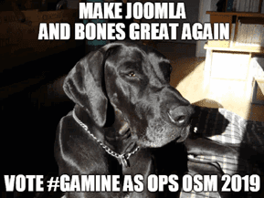 Gamine for Operations 2019