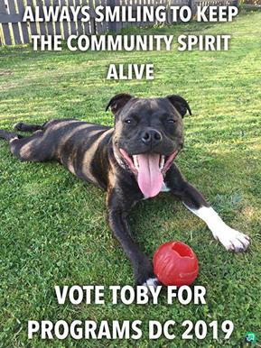 Toby for Programs 2019